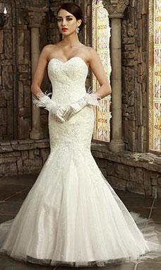 Bridesire Jurken Zeemeermin Prachtige Jurken Voor Alle